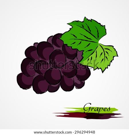 Hand drawn vector purple, ripe grape fruit on light background - stock vector