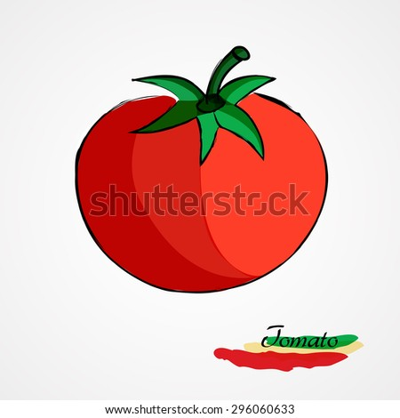 Hand drawn vector red tomato fruit, vegetable, on light background