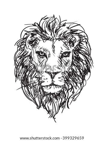 Handdrawn Vector Sketch Lions Head Stock Vector 399329659