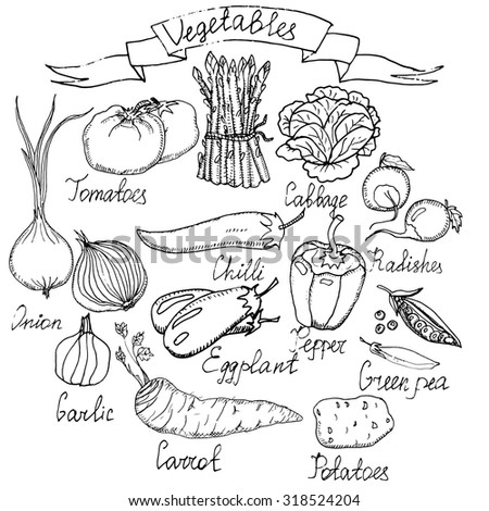 Stock Vector Collection Of Hand Drawn Vegetables Vector Illustration In Vintage Style