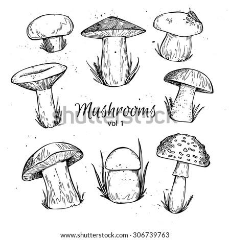 how to draw magic mushrooms