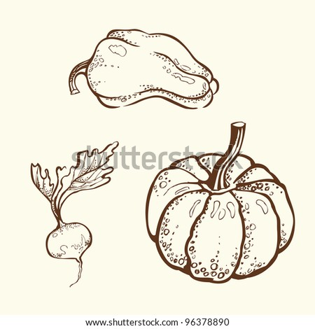 Hand-drawn vegetables - stock vector