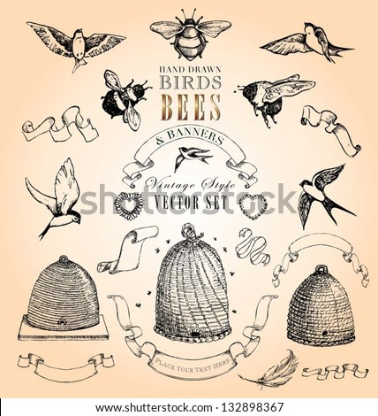Hand Drawn Vintage Birds Bees And Banners Vector Set