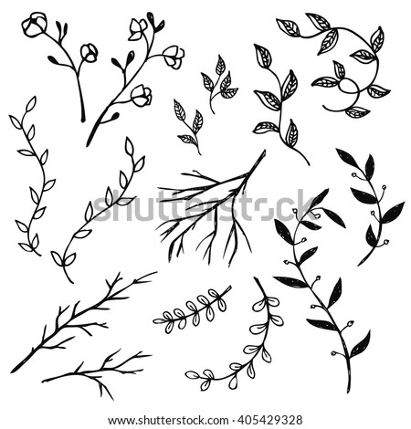 Hand Drawn vintage floral elements. Set of decorative branches.