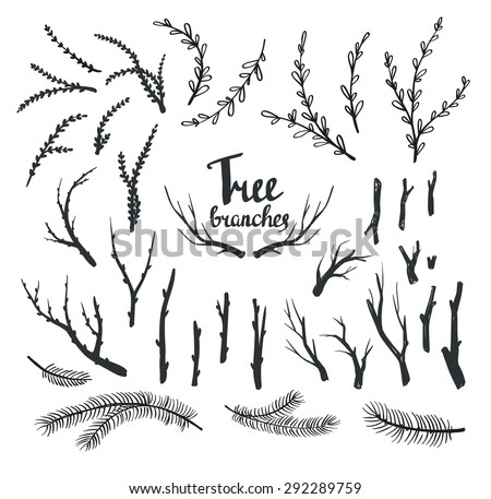 Hand Drawn Vintage Tree Branches Rustic Decorative Vector Design Set