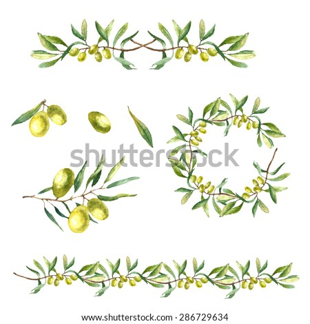 Hand drawn watercolor illustration with olives. Set of the elements: olives, olive branch and wreath on the white background. - stock vector