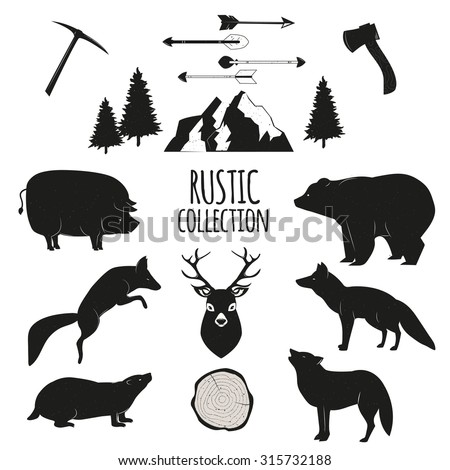Hand Drawn wilderness  animals and objects set - stock vector