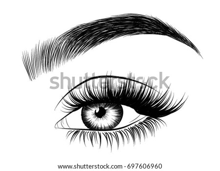 Hand drawn womans eye with perfectly shaped eyebrows and full lashes idea for business