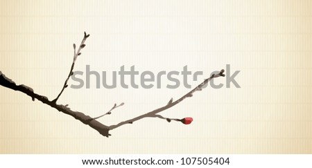 Hand painted Japanese sumi-e illustration of a plum blossom branch with flower buds that are about to bloom.