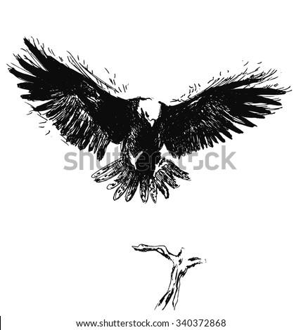 hand sketch eagle - stock vector