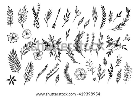 Hand sketched vector vintage elements ( laurels, frames, leaves, flowers, swirls, feathers). Wild and free. Perfect for invitations, greeting cards, quotes, blogs, posters. - stock vector