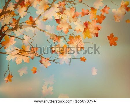 Happy Thanksgiving Day background with beautiful autumn maple leaves. And also includes EPS 10 vector - stock vector