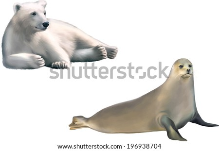 harp seal isolated on white background - stock vector