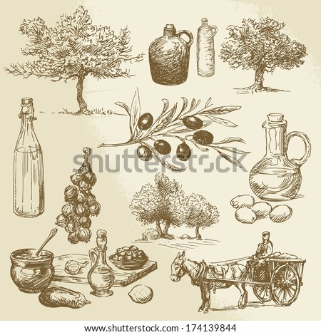 harvest and olive product - hand drawn collection - stock vector