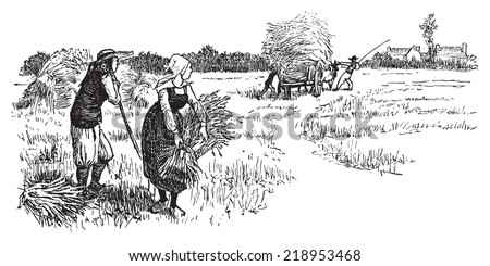 Harvest in Brittany, vintage engraved illustration. Journal des Voyages, Travel Journal, (1879-80). - stock vector