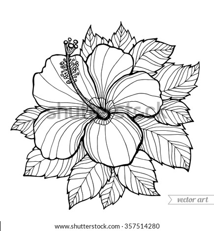 Hawaii Hibiscus Flower Leaf Aloha Vector Floral Artwork Coloring Book Page For
