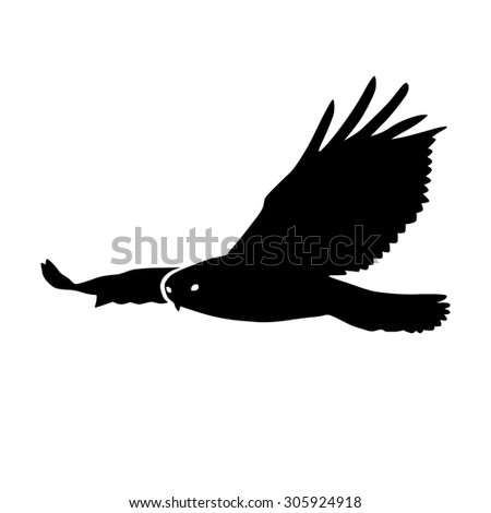 Hawk or eagle silhouette flat icon for nature apps and websites - stock vector