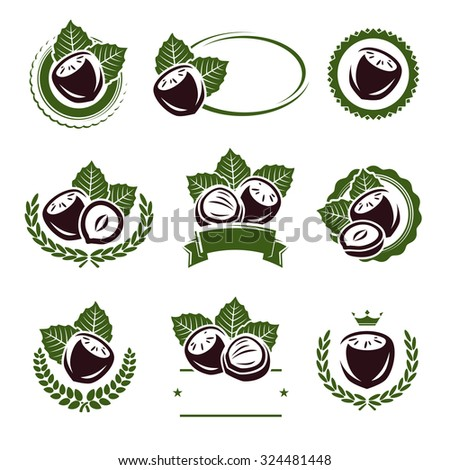 Hazelnut nuts labels and elements set. Vector - stock vector
