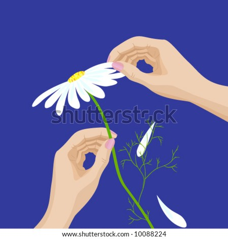 He loves me, he loves me not. Pair of woman's hands holding a daisy flower, tearing off petals one by one. - stock vector
