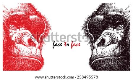 Head gorilla. Hand drawn. Vector illustration. Vector poster - stock vector