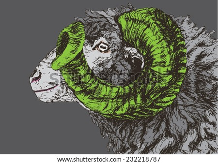 Head of a ram, side view. Hand drawn sketch portrait, pop art style. Vector illustration.
