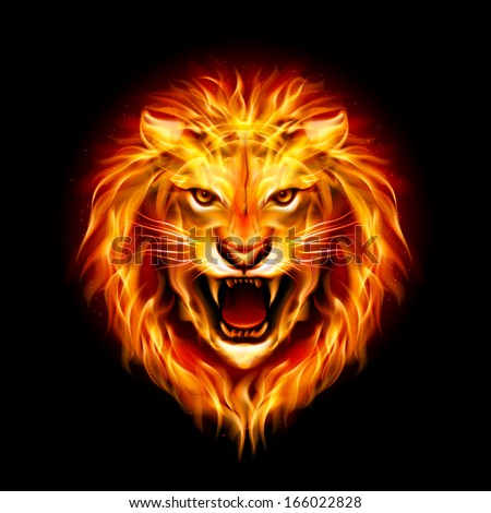 Head of aggressive fire lion isolated on black background. - stock vector