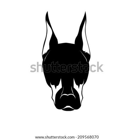 head of doberman - dog - stock vector
