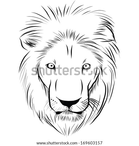 Head of lion hand - drawn