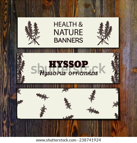 Health and Nature Collection. Collection of banners with herbal elements on wooden background. Hyssop - Hyssopus officinalis