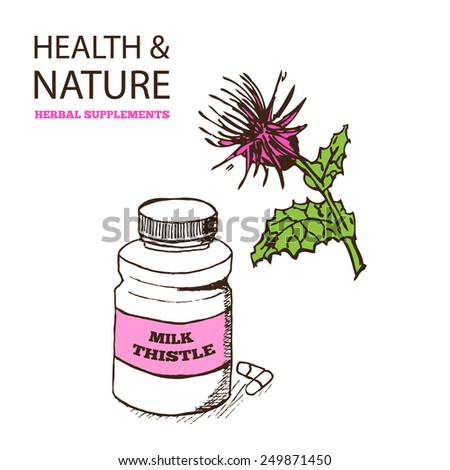 Health and Nature Supplements Collection. Milk Thistle - Silybum marianum - stock vector