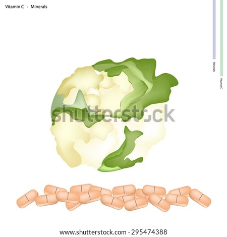Healthcare Concept, Illustration of Fresh Cauliflower Vitamin C and Minerals Tablet, Essential Nutrient for Life.