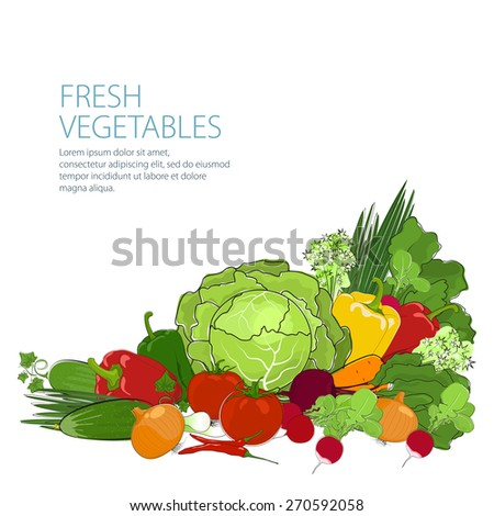 Healthy food, fresh raw vegetables isolated on white background, organic food,vector illustration
