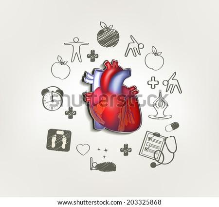 healthy heart stock images royaltyfree images  vectors