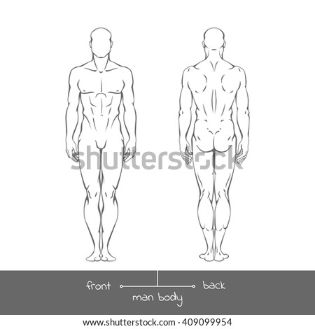 Healthy young man from front and back view in outline style. Male muscular body shapes vector linear illustration with the inscription: front and back. Vector outline  illustration of a human figure - stock vector