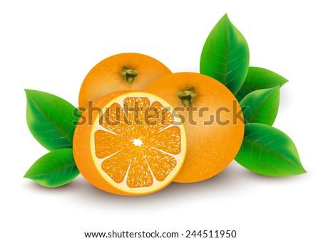 Heap of fresh orange  - stock vector