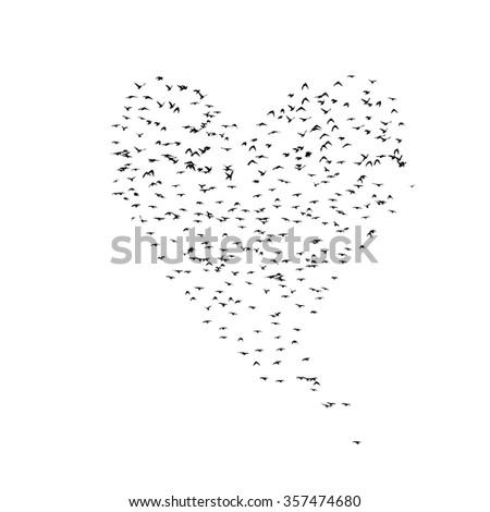 Heart of birds. Vector - stock vector