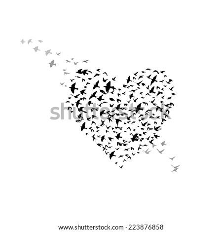 heart of the birds. Vector - stock vector