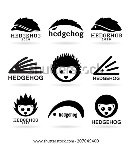 Hedgehogs (1) - stock vector