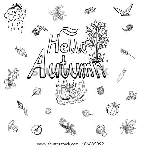 Hello Autimn Hand Drawn Set Itemized Stock Vector 486685099