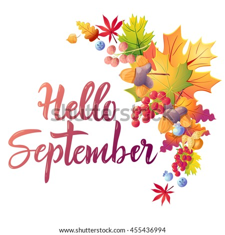 Hello September Colorful Greeting Card With Calligraphy Text, Leaves And  Berries. Isolated On White