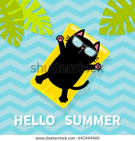 Pool Float Stock Images Royalty Free Images Amp Vectors