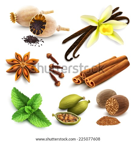 Herbs and spices decorative elements set of poppy seed vanilla cinnamon isolated vector illustration - stock vector