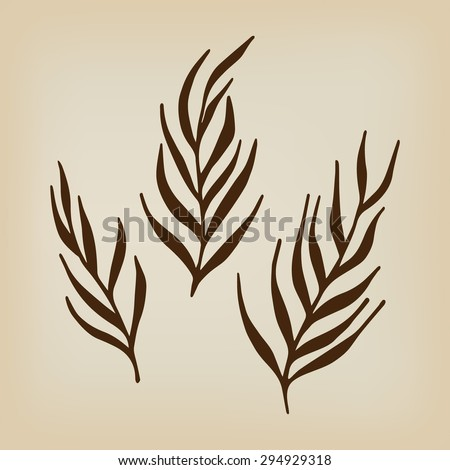 Herbs and twigs for spring and summer design. Herbs and twigs hand-drawn vector illustration. - stock vector