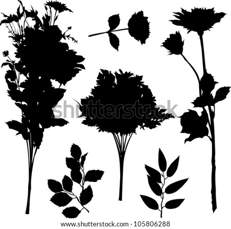 Herbs. Plants and flowers illustration isolated on white - stock vector