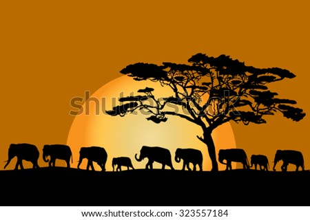 Herd of African elephants silhouettes at sunset - stock vector