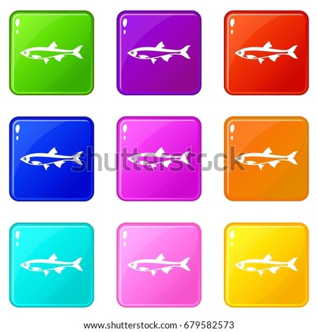 herring fish icons of 9 color set isolated vector illustration