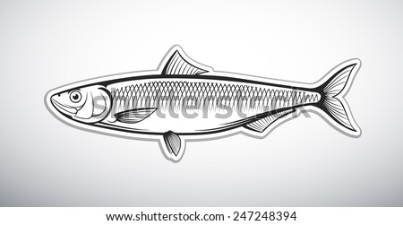 herring fish outline vector illustration - stock vector