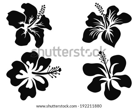 Hibiscus vector silhouettes - stock vector