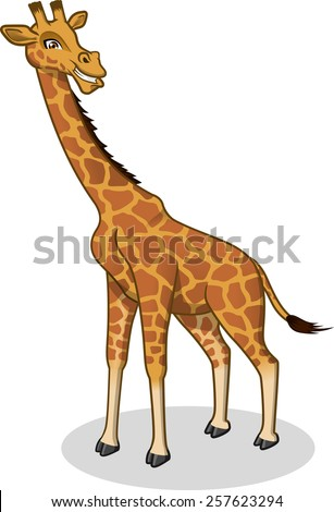 High Quality Giraffe Vector Cartoon Illustration