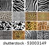 Highly detailed animal skin vector pack - 16 different pattern - stock photo